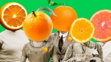 LARANJAS 390x220 - MPE investiga candidaturas 'laranjas' em Nazarezinho, no Sertão da Paraíba; CONFIRA DOCUMENTOS.
