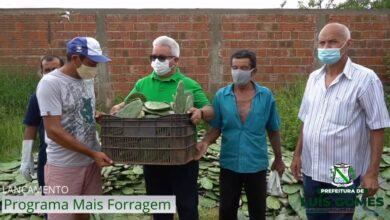 LG PROGRAMA 390x220 - AÇÃO: Prefeitura de Luís Gomes lança programa ''Mais Forragem'' que contempla criadores e agricultores local.