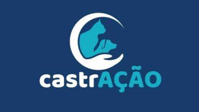 castracao 390x220 - Adota Patos pede fim de parceria no programa de castração, mas Prefeitura continuará com procedimentos em parceria com a UFCG